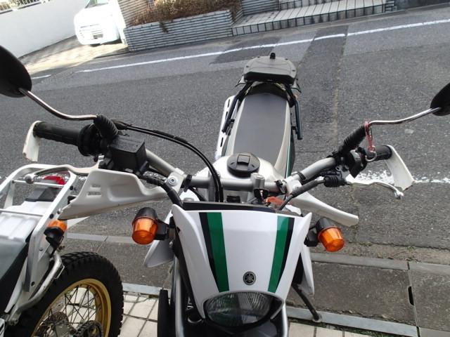 P1150965.JPG
